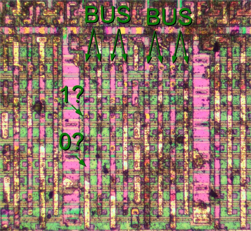  500x461